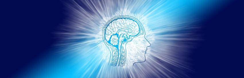 Travailler sa mémoire est la seule méthode vraiment efficace pour augmenter votre capacité à mémoriser - espritbiz